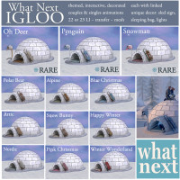 What Next - Igloo