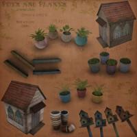 Zigana - Pots & Plants