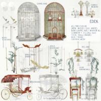Anc Ltd - Eden