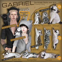 Gabriel - Cat Hooded