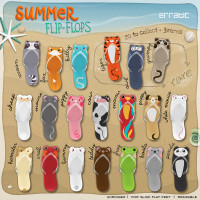 erratic - Summer Flip-Flops