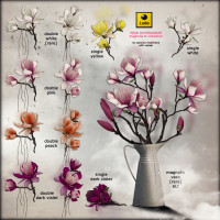 Lode - Head Accessory - Magnolia II Collection