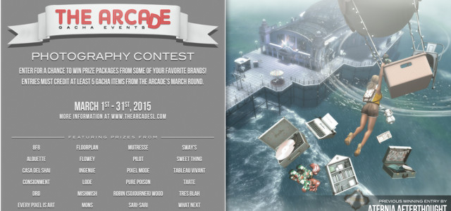 THE ARCADE PHOTOGRAPHY CONTEST – MARCH 2015