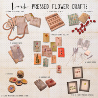 Lark - Pressed Flower Crafts