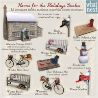 What Next - Home for the Holidays