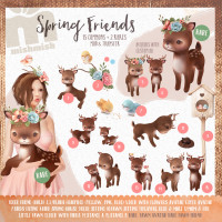 MishMish - Spring Friends